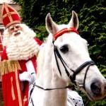 Sinterklaas en andere collectieve leugens